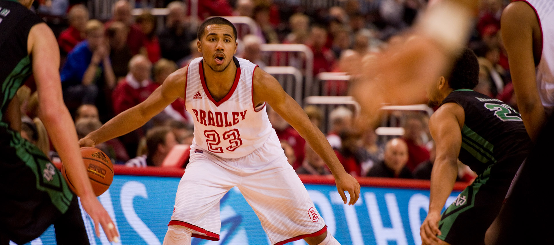 Bradley4